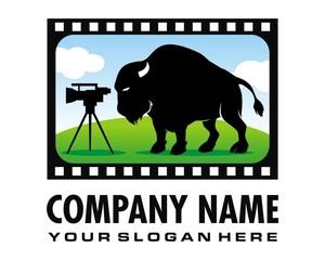 bull bison video logo image vector