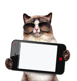 Cat holding a blank smartphone. - 82535701