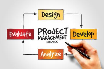 Project management process, business concept