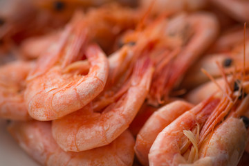 Cooked shrimp on white plate. Shallow depth of field.