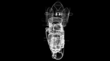 The holographic image of a motorcycle