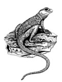 Ornate lizard with ethnic pattern in black and white graphic sty