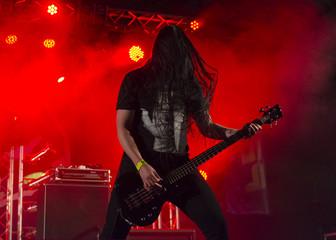Bajista de heavy metal