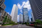 Fototapeta 高層ビル群 東京