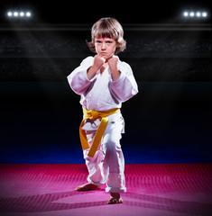 Little boy aikido fighter