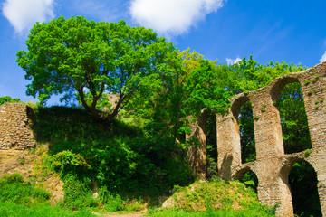 Vecchio acquedotto romano di Monterano