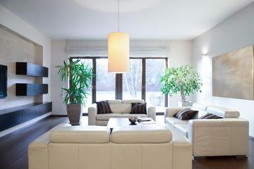 Bright cozy apartment