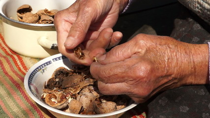 Unshelled and Peeling Walnuts by Granny's Hands