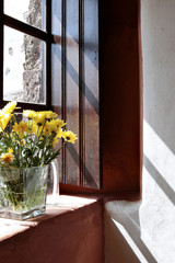 Yellow flowers on windowsill still life