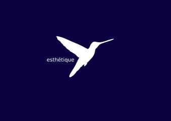 Kolibri - Branding