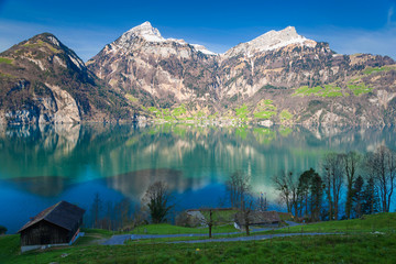 Apples: Swiss panorama with lake