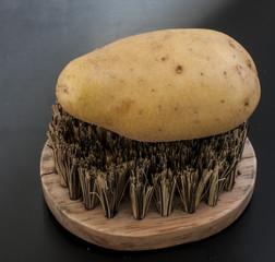 Kartoffel auf Gemüsebürste
