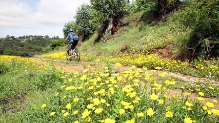 mountain bicycle riding in the countryside