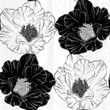 Monochrome seamless pattern with flowers.