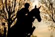 Obrazy na płótnie, fototapety, zdjęcia, fotoobrazy drukowane : Equestrian Sports