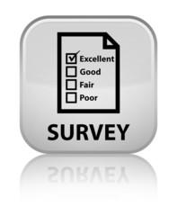 Survey (questionnaire icon) white square button