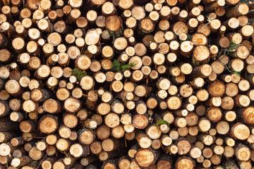 Pine, birch and oak logs