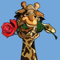 giraffe holding a rose in its mouth