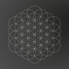 Flower of life, geometric shape, line art design, tattoo