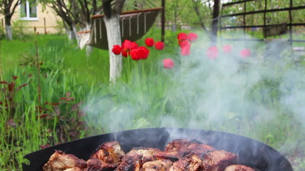 grilled rosted meat barbecue outside