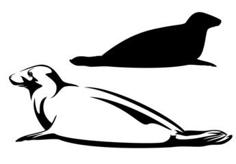 sea seal black and white design