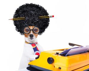 secretary typewriter  dog