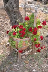Stuhl mit Blumen