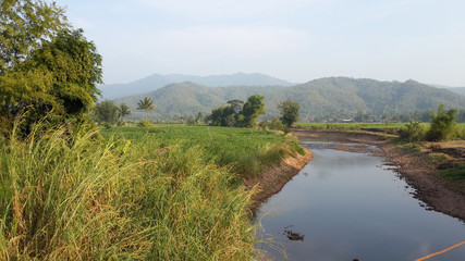 Canal flow through a meadow in mountainous area.