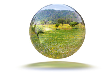 Green landscape in a sphere