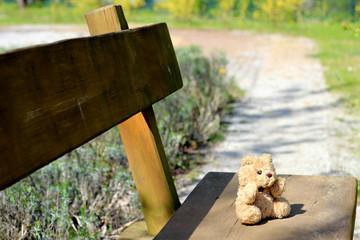 Teddy auf Bank