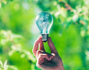 Hand holding light bulb on green nature background
