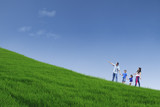 Happy family walk on green field and hold hands