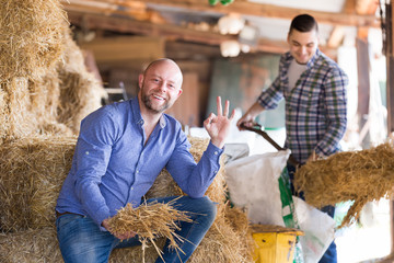 Two farmers working in barn