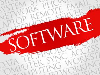 Software word cloud concept