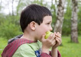 Child boy eating an apple in a park or in nature.