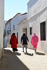 Niños camino de la fiesta del carnaval en el pueblo