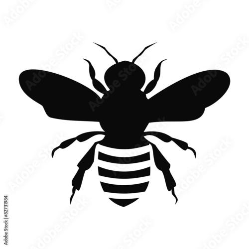 Zdjęcia na płótnie, fototapety, obrazy : Black Bee Silhouette isolated on white background - illustration