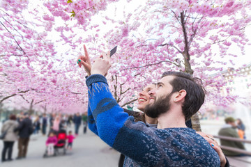 Hipster couple taking photos of cherry blossoms in Stockholm