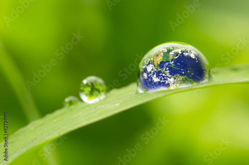 Fototapeta leaf with rain droplets - Recovery earth concept
