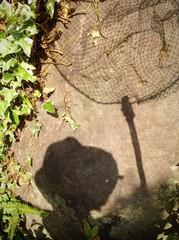 虫採り網2