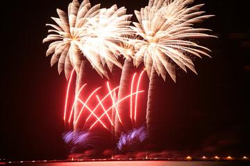 Fuochi d'artificio al porto