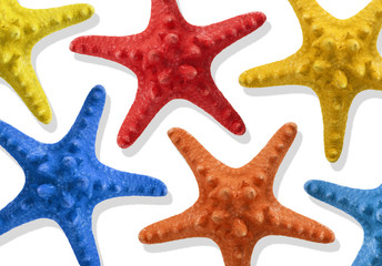 Colorful starfish in white background