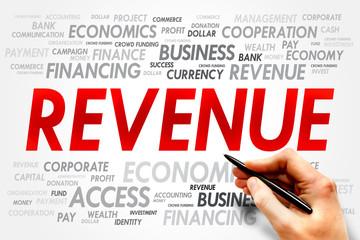 REVENUE word cloud, business concept