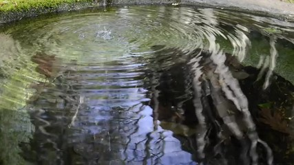 Looping trickle of water spills into a basin