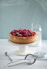 cheesecake with coconut and raspberry