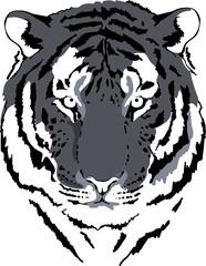tiger head in grey interpretation 4
