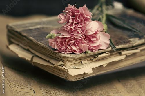 Plagát, Obraz Eski Kitap ve Karanfil