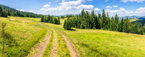 Panel Szklany path through meadow to forest in mountain