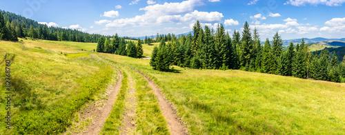 Fototapeta path through meadow to forest in mountain