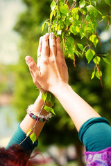 Spring prayer – adoring the healing powers of the spring, Tree